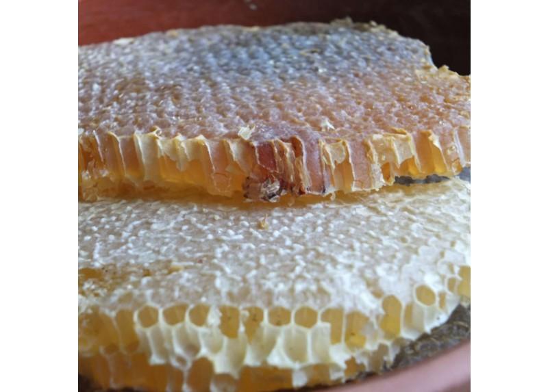 Siirt Pervari Framed Honeycomb